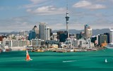 Auckland Arrival Package