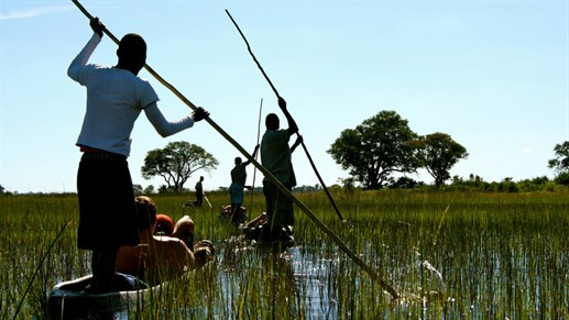 Go on a unforgettable Mokoro excursion - Okavango Delta