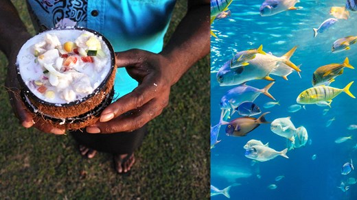 19 reasons why you should not visit Fiji