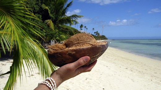 Travel to Fiji and eat a coconut straight from the tree