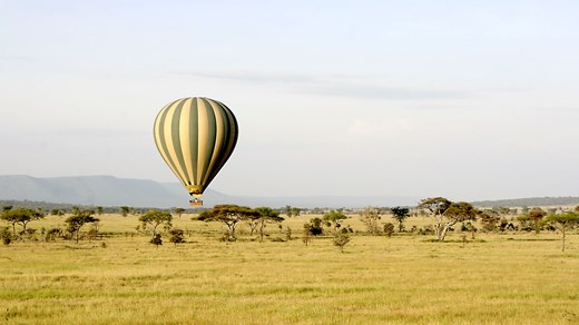 Go on your dream safari on the Serengeti in Tanzania.