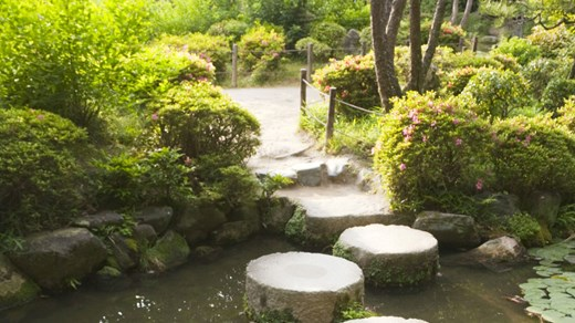 Visit the beautiful gardens and parks in Kyoto