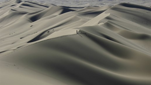 The Mongolian Gobi Desert