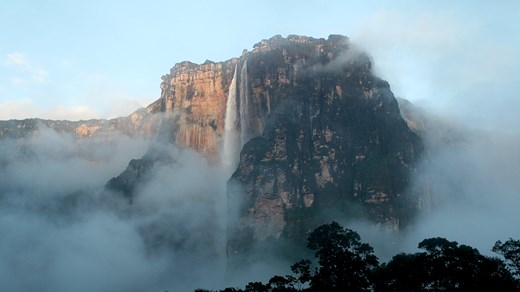 Visit the World's highest waterfall Angel Falls in Venezuela