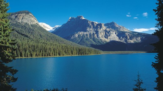 how to go banff national park