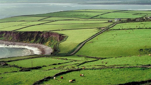Cheap Travel To Ireland Kilroy