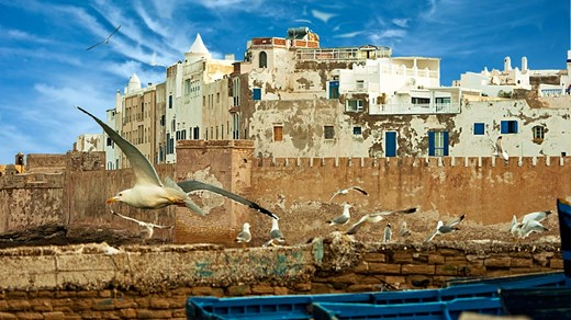 Cheap Travels To Essaouira Kilroy