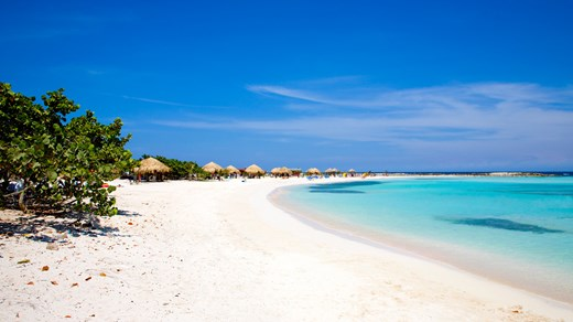 There are many paradise beaches on Aruba